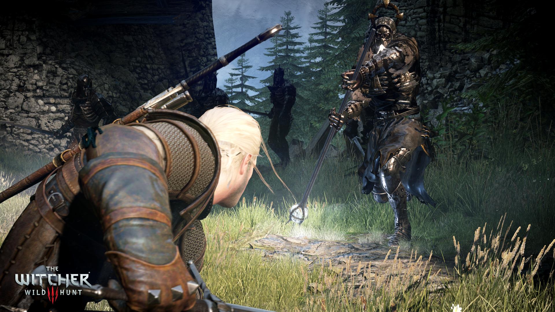 the_witcher_3_wild_hunt_geralt_battling_a_general_of_the_hunt_2
