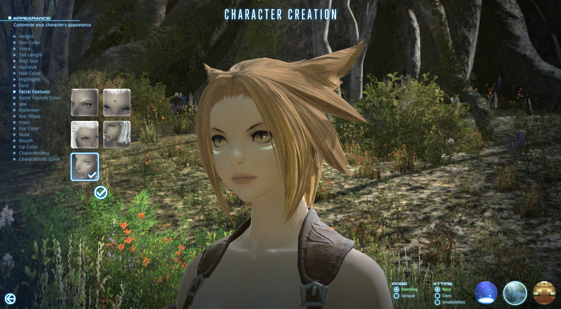 Gamer Escape Character Creation Images From A Realm Reborn